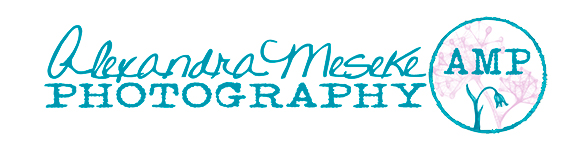Alexandra Meseke Photography – Rochester, NY Wedding Photographer logo